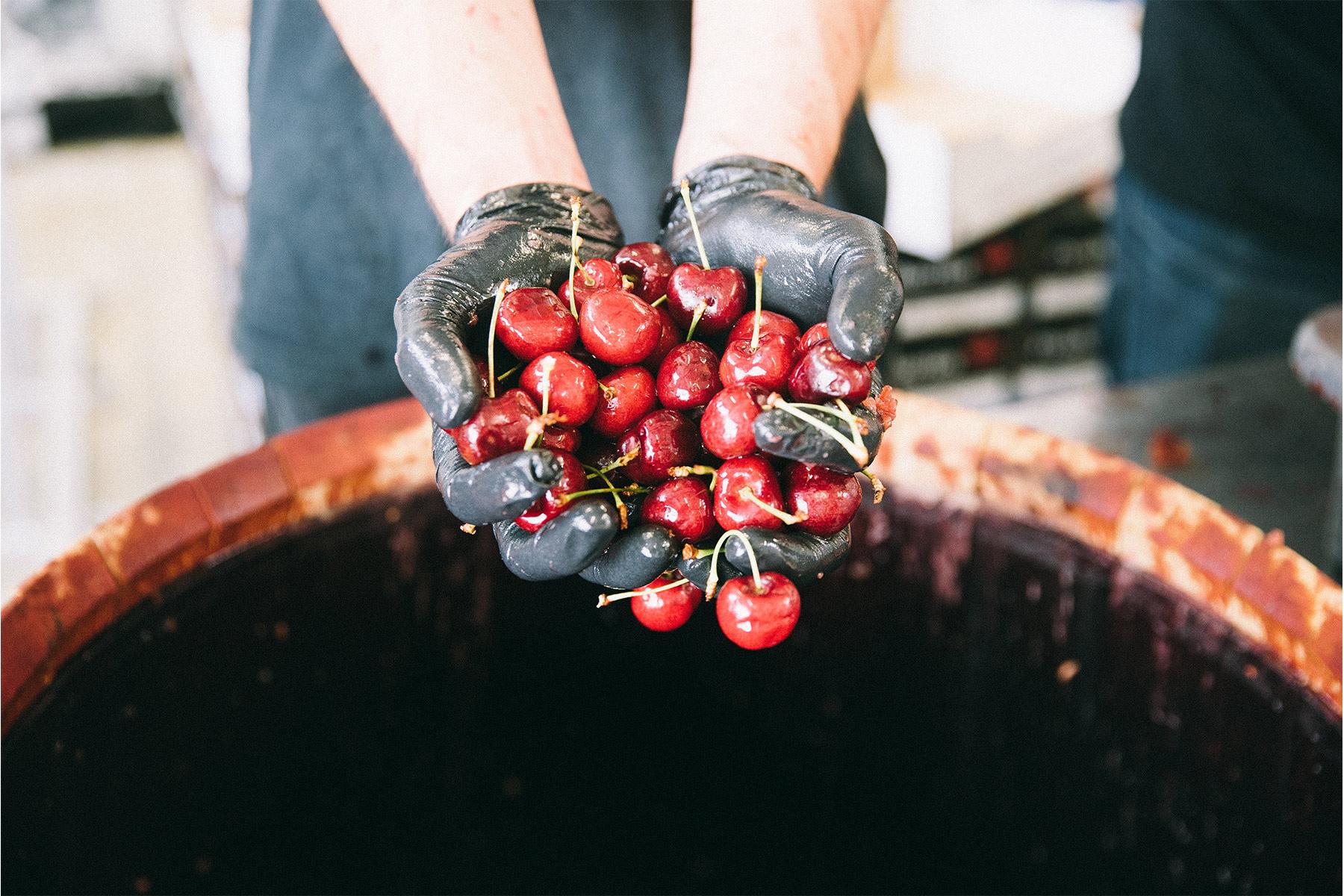 BC Cherry Nectar – 33B-EXP.013.MKII